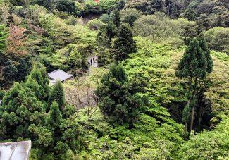 Tokyo-Kyoto #6 : de Kiyomizudera à Ginkakuji
