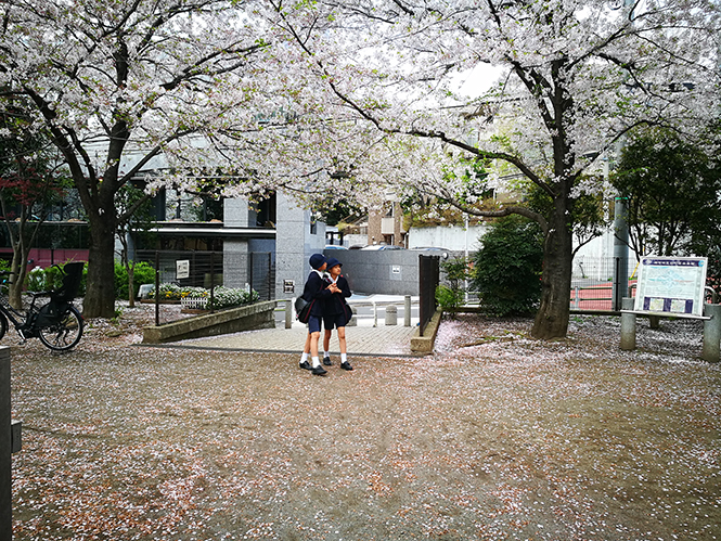 Armelle Kergall à Tokyo #1