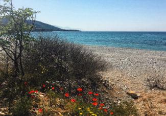Road trip dans le Péloponnèse #10 : Villas Liodentra à Kardamyli