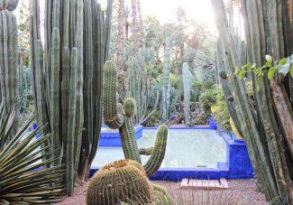 Quelques idées de sorties à Marrakech