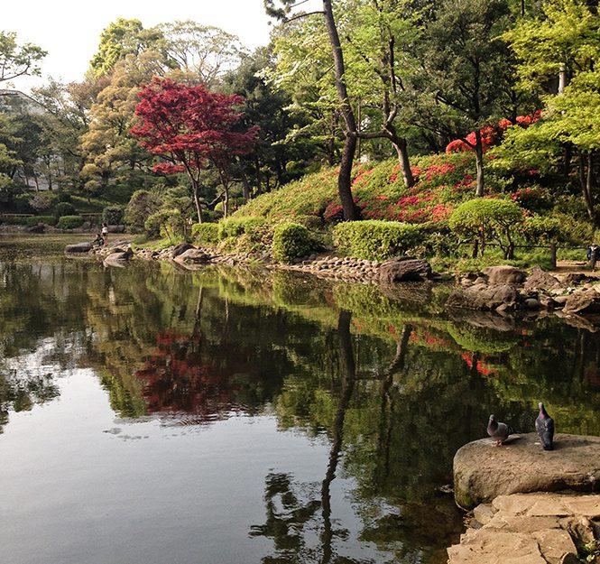 Tokyo-Kyoto #1 : demandez le programme !