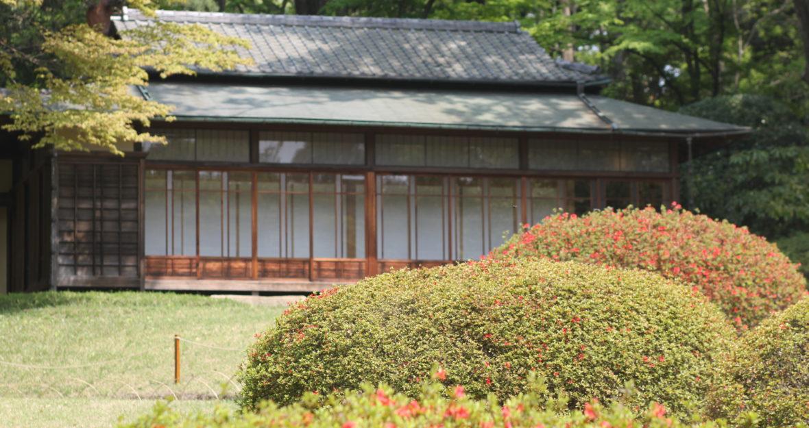 Tokyo-Kyoto #2: le quartier d'Omotesando