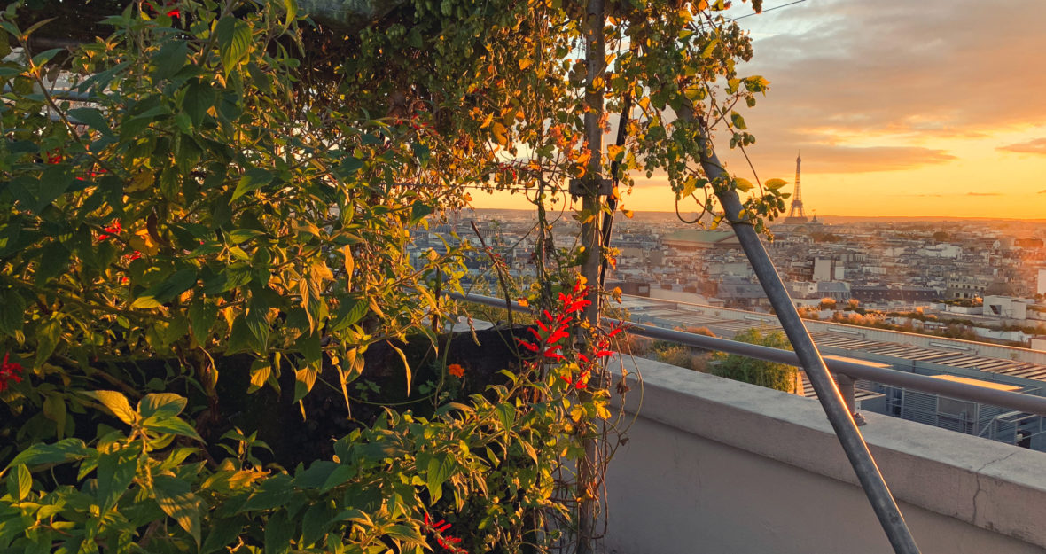 concours: une masterclass dans la plus belle ferme bio urbaine de Paris